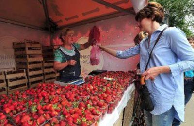 Как выбрать клубнику на рынке