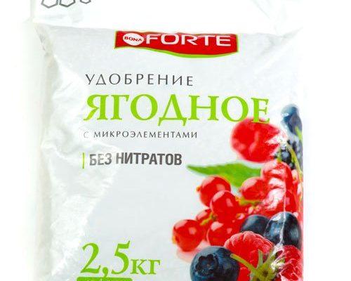 БОНА ФОРТЕ Ягодное с биодоступным кремнием