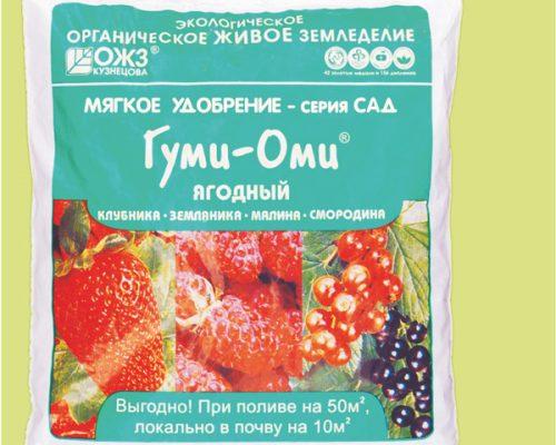 Гуми – Оми – Ягодный (производитель «Башинком»)